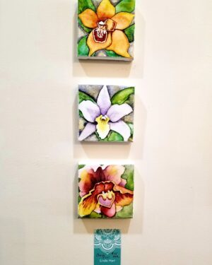 Orchid trio 3 4 x 4s